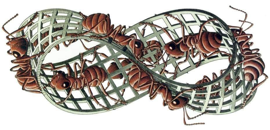 EscherMoebius